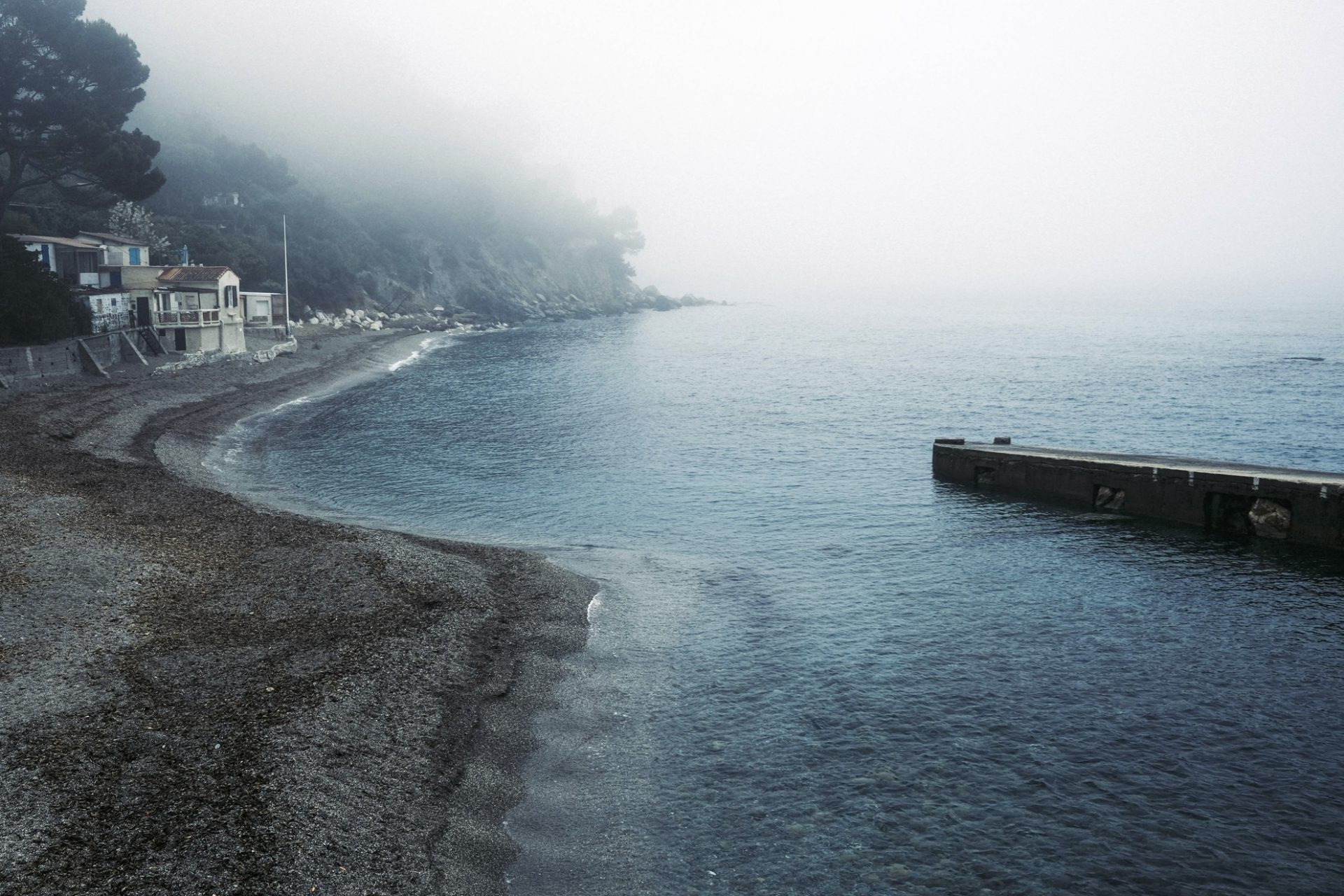 Fuji X100v pin de galle fog @laurentparienti-7
